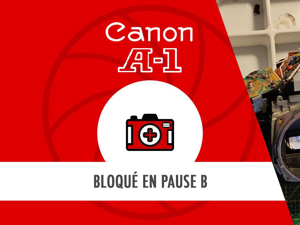 HostoPhoto - Canon bloqué en pause B